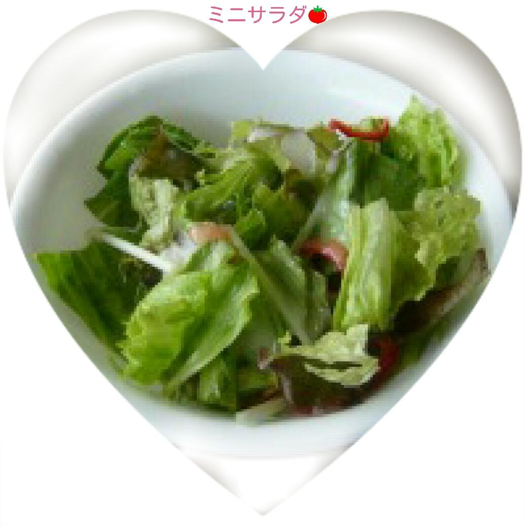 151119_lunch_04.jpg