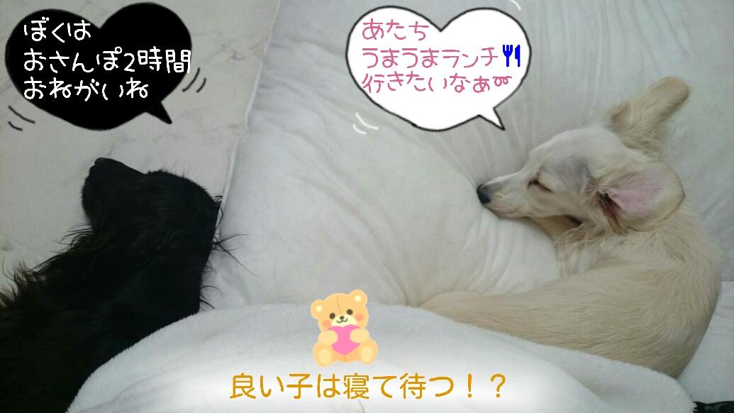 151120_oreno_01.jpg