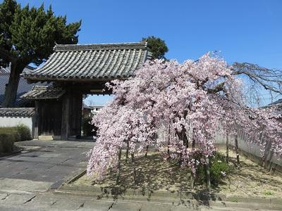 IMG_0571 広雲寺