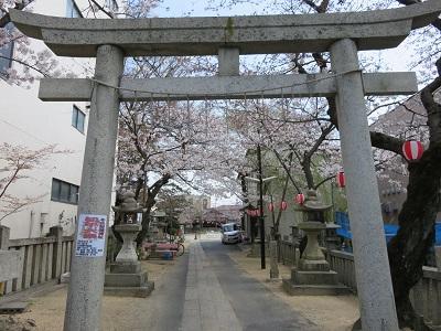IMG_1568 天御中主神社