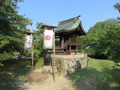 IMG_5575 亀島