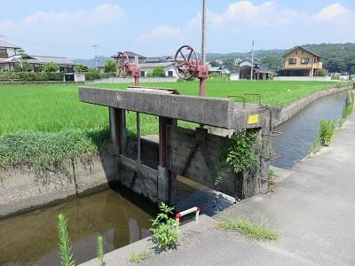 IMG_5471 高松城