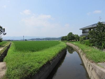 IMG_5473 高松城