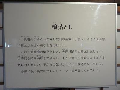 IMG_3456 槍落とし