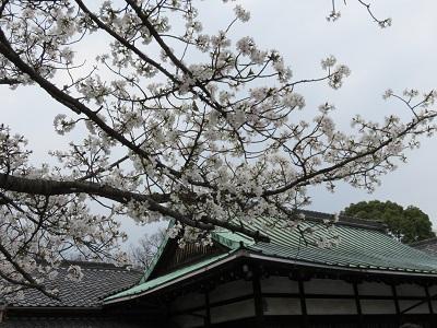 IMG_3533 豊国神社