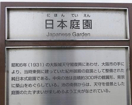 IMG_3554 日本庭園