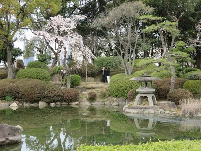 IMG_3555 日本庭園