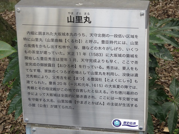 IMG_3601 山里丸
