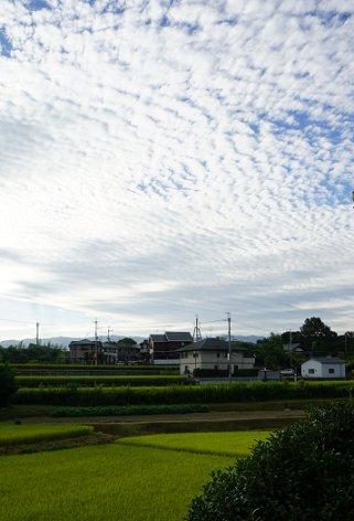 2015100201.jpg