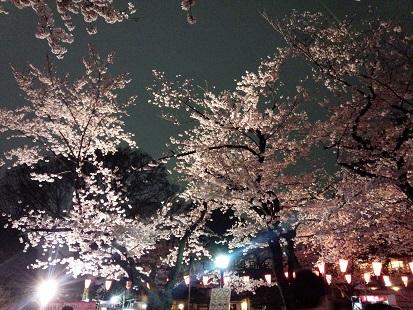 28夜桜上の公園(2)
