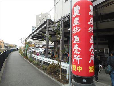 DSCN0146_R.jpg