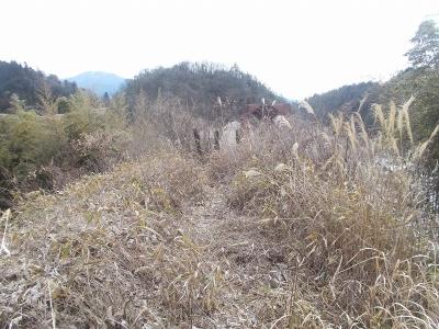 北恵那鉄道3