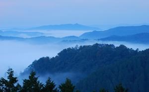 雲海と備中松山城
