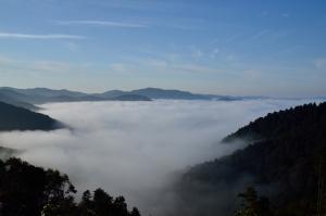 山道から見た雲海
