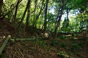 相畑城戸跡の石積み