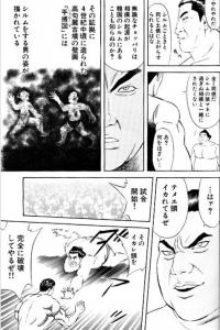sumopaku.jpg