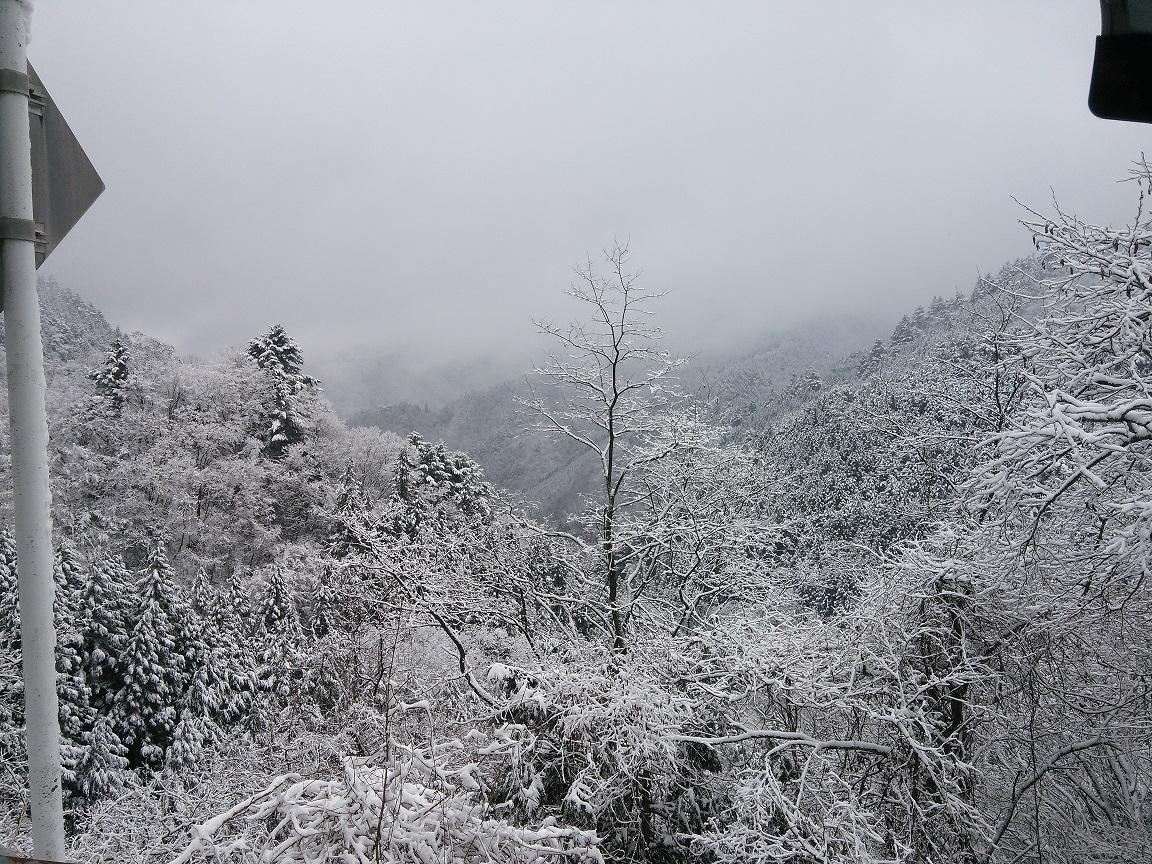 ① 3月の雪1