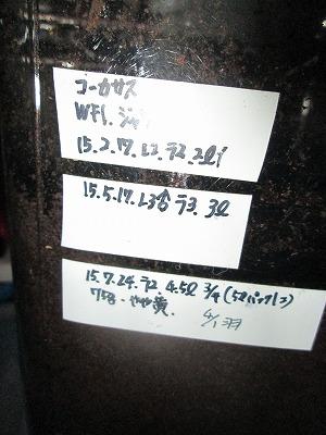 ccwf1no1date.jpg