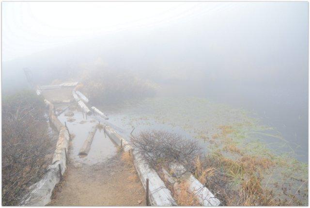 青森県 観光 登山 トレッキング 八甲田山