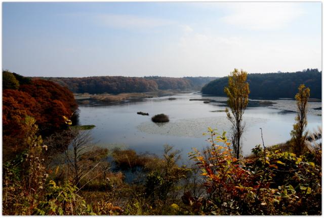 青森県 三沢市 三沢市おもてなしバスツアー 寺山修司記念館 三沢市民の森