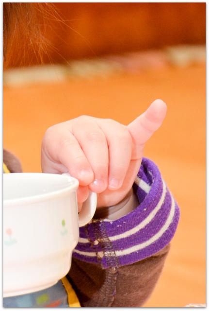 青森県 弘前市 保育園 保育所 幼稚園 出張 スナップ 写真 撮影 カメラマン インターネット 写真 販売 イベント 行事 祭り お弁当デー