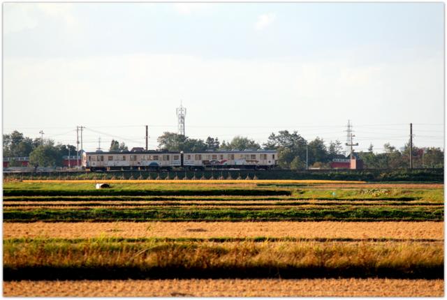 青森県 弘前市 黒石市 弘南鉄道 弘南線 電車 田んぼ 田園 風景 写真