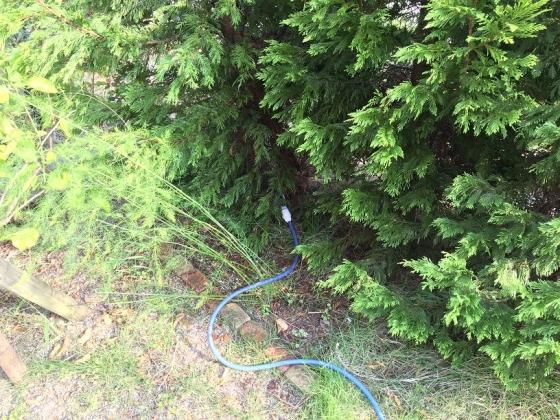 20151115003_木の根元に水をしみこませる