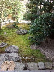大徳寺お庭