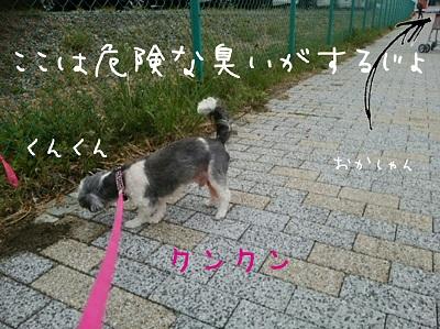 yurireo0402 (3)