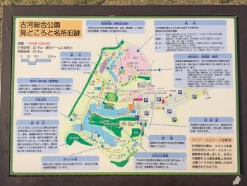 古河総合公園案内図