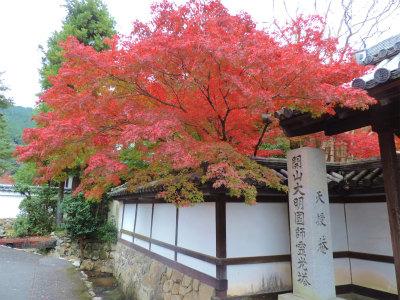 11.7南禅寺の紅葉