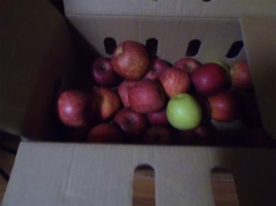 12.3減ったリンゴ