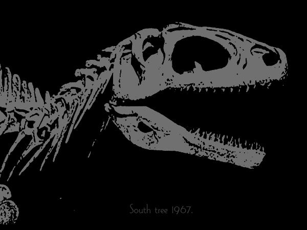 恐竜ブログ用