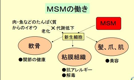 MSMのはたらき