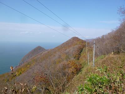 gokibiru20159