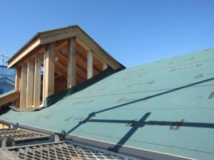 屋根防水①