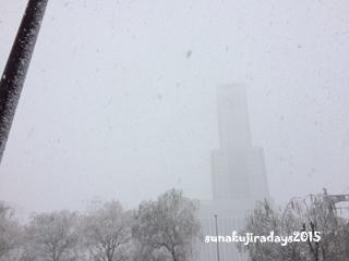 20151207_snow.jpg