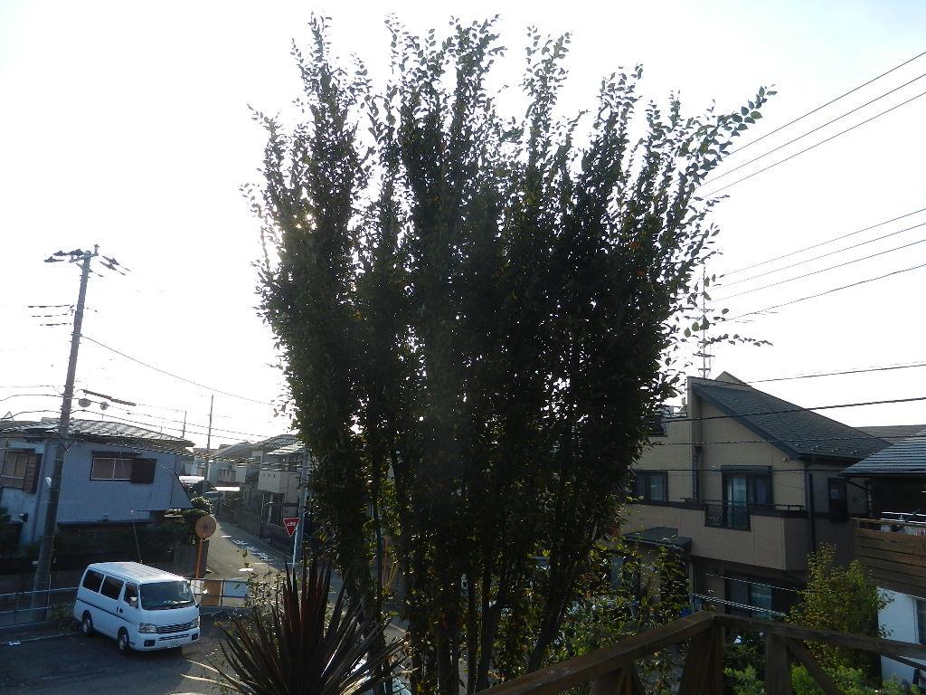 DSCN7833.jpg