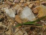 大成鉱山のペグマタイト2
