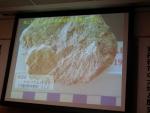 京丹後市の希少鉱物「河辺石」