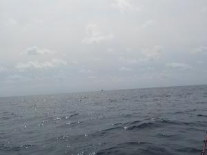 DSCN1857 10時半南風が吹いてきた