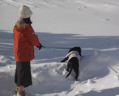 雪深いところも何のその