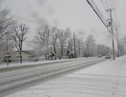 雪だぁぁぁ~