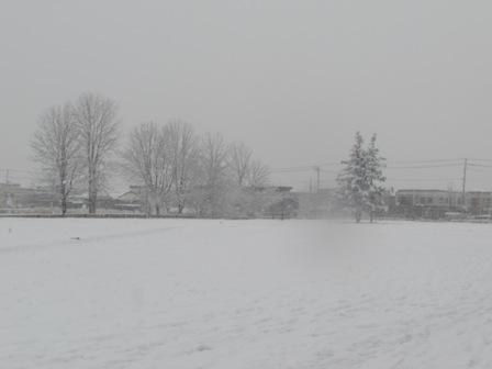 とうとう冬が来たね