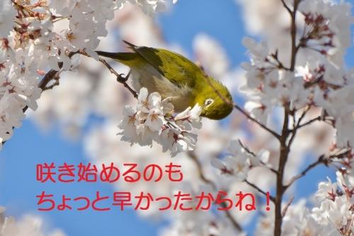 030_201603262059377bb.jpg