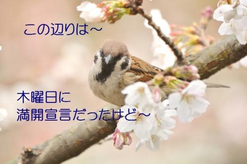 030_201604021915300d0.jpg