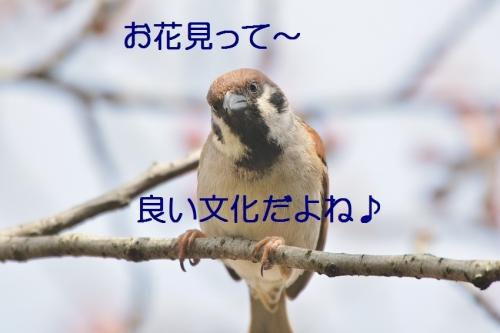 190_2016040321064027d.jpg