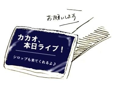 3702-10.jpg