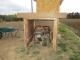 藁小屋の隣に置いた