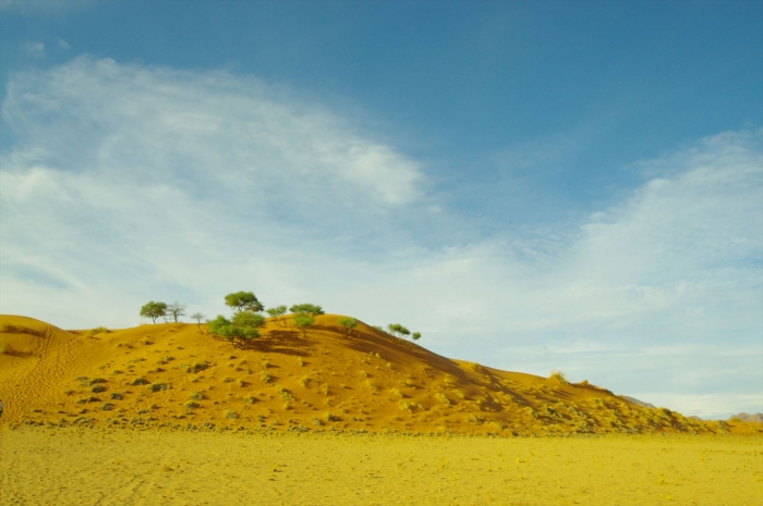 ナミブ砂漠サンセット (2)
